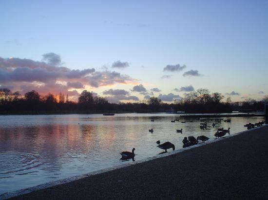 Lago Hyde-park