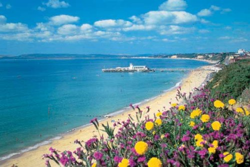 Disfrutar de la belleza natural de Bournemouth