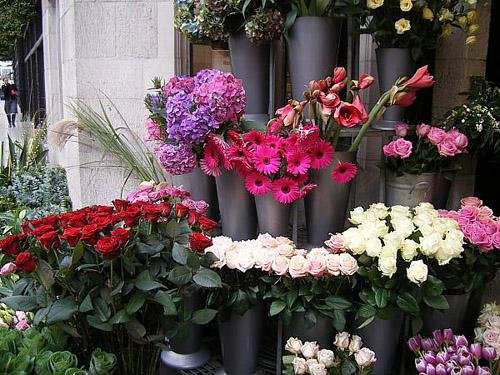 Calle de Londres y flores
