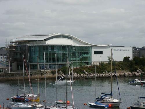 El Acuario Marino Nacional, en Plymouth