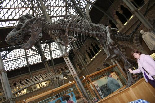 Museo Ciencias Naturales Oxford