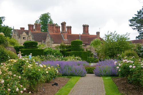 Borde hill un hermoso jard n ingl s for Arbustos en jardines