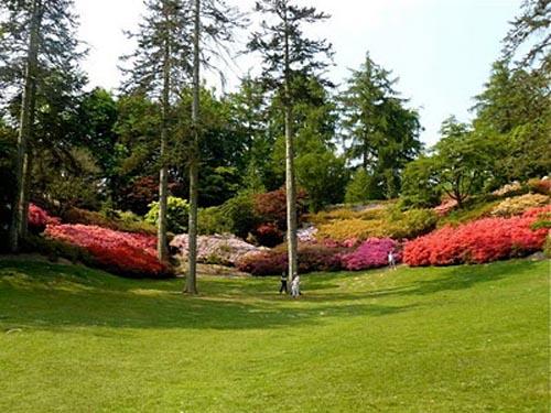 La belleza del jard n savill for Imagenes de jardines exoticos