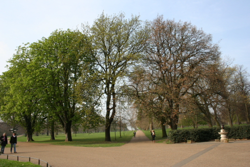 Kensington Park, refugio real