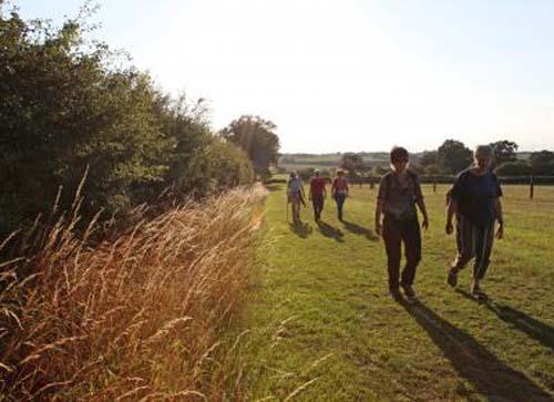 Boudicca, un camino por la campiña de Norfolk